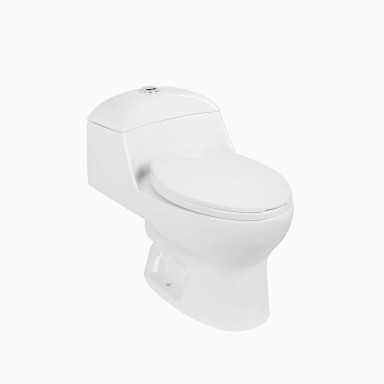Caspian One-Piece Toilet with Seat