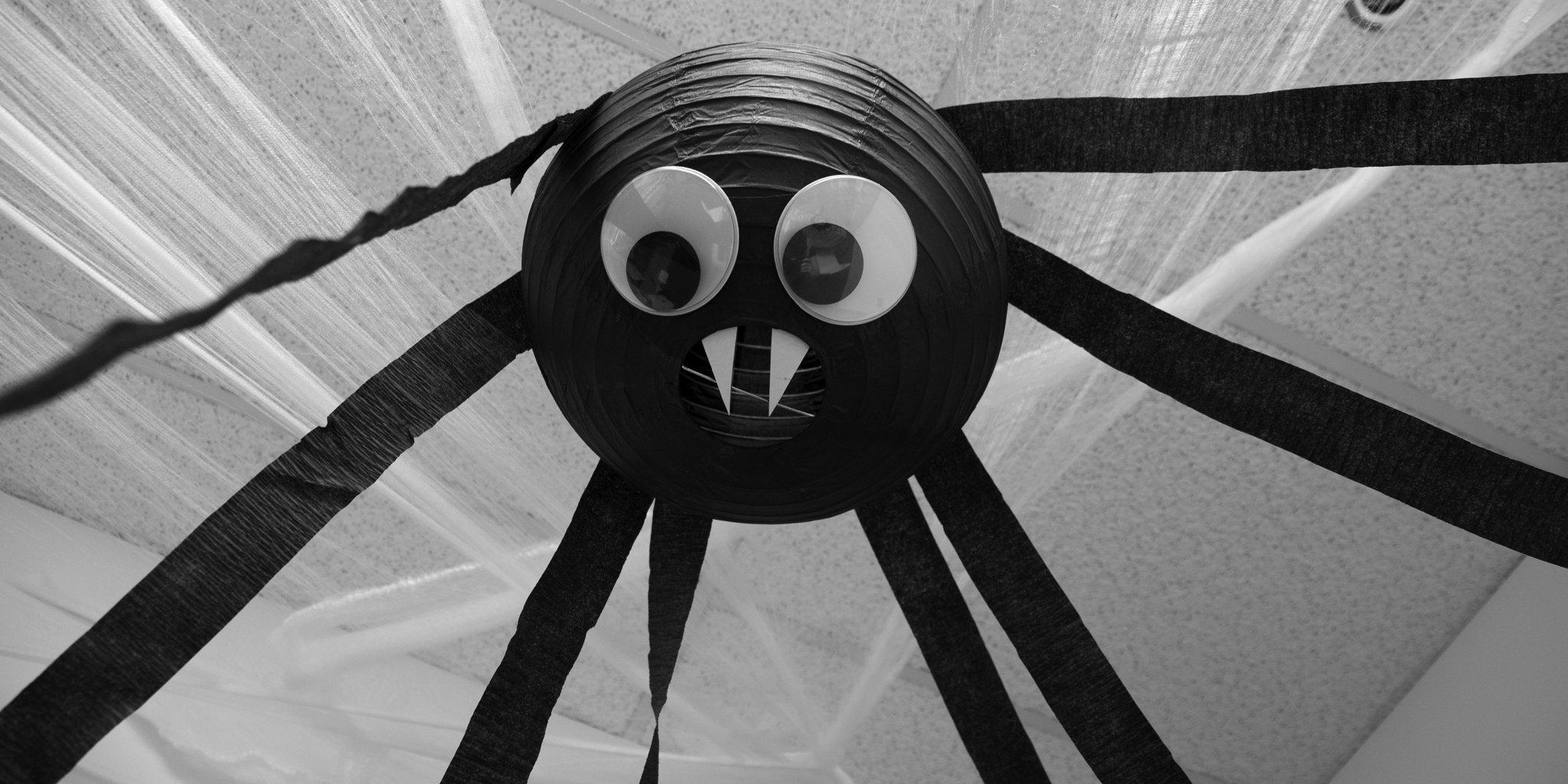 paper lantern spider